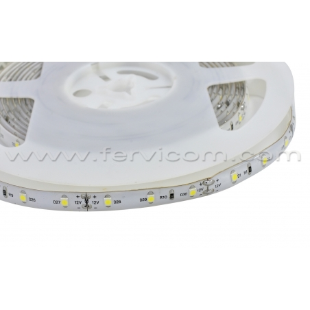 Cinta LED Tipo1 3528 Siliconada 9000k