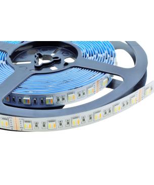 Cinta LED 5050 SS RGB+W+WW 24V