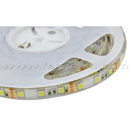 Cinta LED Standar 5050 Blanco Frio Siliconada