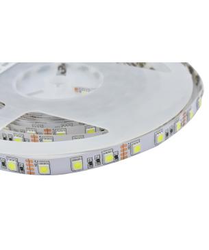 Cinta LED Standar 5050 Blanca Sin silicona