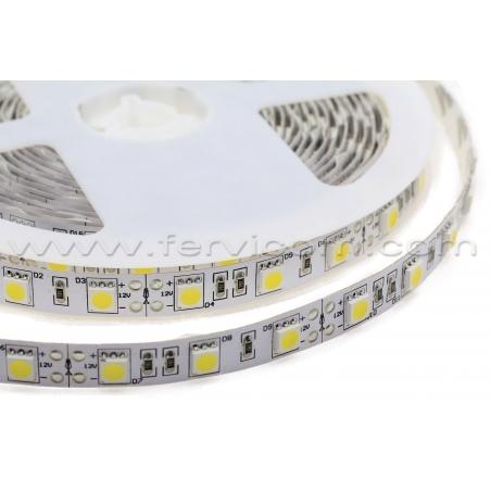 Cinta LED 5050 SS Tipo1 Profesional